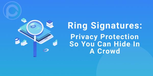 Ring Signatures: Privacy Protection So You Can Hide In A Crowd